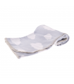 T1063 Plaid Nuage Ferribiella