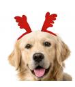 Barrette pour chien Oreille de Renne Croci