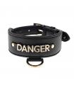LDR14 Collier Large en Simili Cuiret Lettre Dangerouge Ferribiella