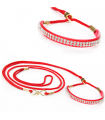 DS02 Laisse d Exposition Rouge et Strass For My Dog