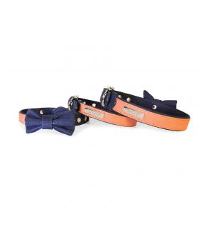 DC129 Collier Bleu Saumon Collar Camon
