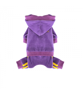 OR283 Jogging Hipster Suit Puppy Angel Purple