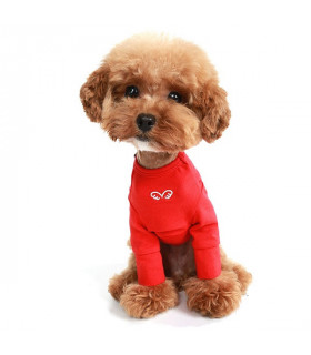 TS304 Tee-shirt Puppy Angel Daily Long Sleeve Red 320