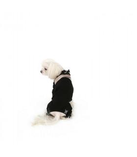 HA233 Harnais Angione Bling Puppy Angel Gold 299