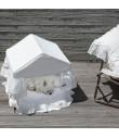 Peekaboo/White Cabana Louisdog