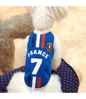 Maillot Équipe de France Griezmann Parisdog
