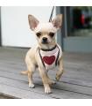 Harnais Rose Laisse Intégrer Cœur Pailleté Parisdog ♥