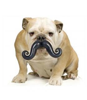 Jouet Tetine Moustache 6377 Record