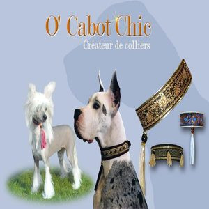 O' Cabot Chic
